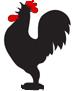 Canta el gallo